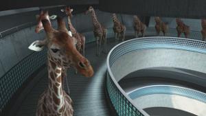 5-metres-80_girafes-piscine_cube-creative_le-blog-de-cheeky_klein