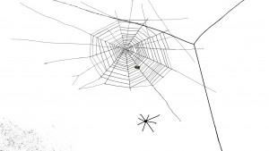 511_ «Spider web» _
