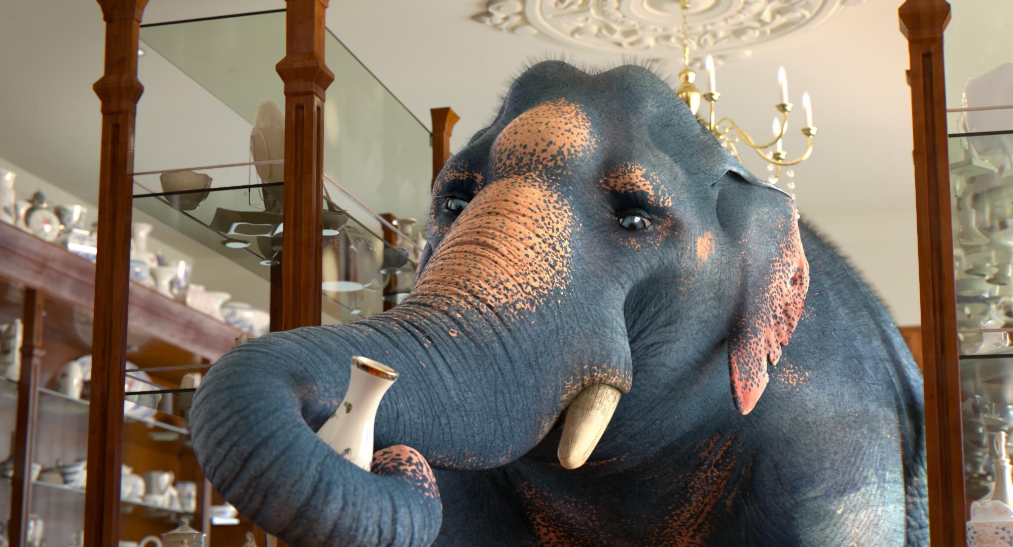 ESMA_2017_Elephant_Still02
